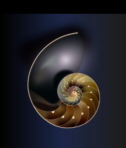 Nautilus A